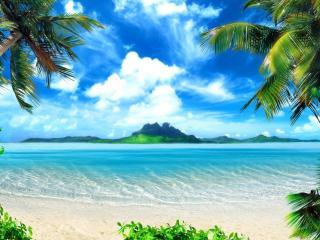 обои Вид с тропического берега фото