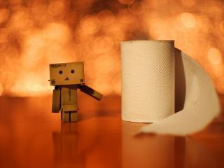 обои Danbo - У туалетной бумаги фото