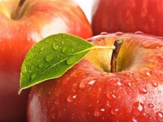 обои для рабочего стола: Яблоки крвсные в росе