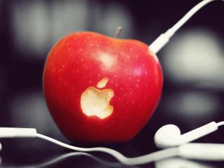 обои Наушники в яблоке с эйпл фото