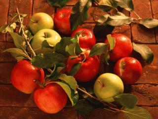 обои Красные и зелёные яблочки фото