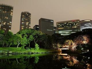 обои Ночной город у озера фото