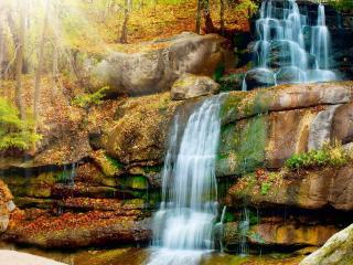 обои Желтая листва у водопада фото