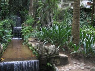 обои Декоративная речка с водопадами фото
