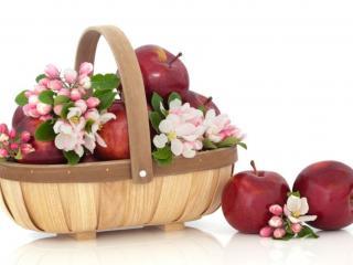 обои Корзинка,   яблоки,   цветы фото