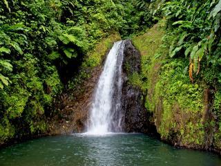обои Падающая вода водопада фото