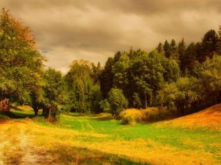 обои Пейзаж в теплых тонах фото