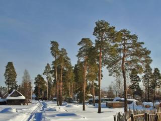 обои Зимняя дорога,   сосны и деревня фото