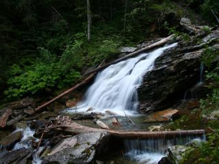 обои Ступенчатых водопадов лесных череда фото