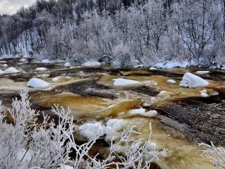 обои Жёлтый лёд фото
