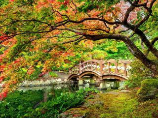 обои Мостик в парке замка Хэтли фото