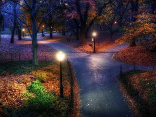 обои В осенним парке фонари горят фото