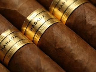 обои Гаванские сигары фото