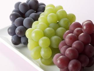 обои Виноград трех цветов фото