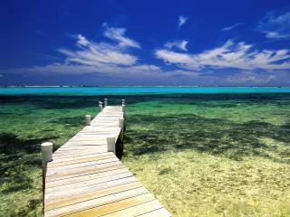 обои Мостик на берегу моря фото