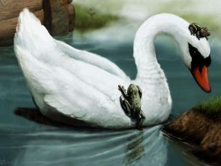 обои Лебедь и лягушки фото
