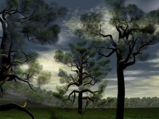 обои Рисованые деревья фото