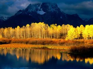 обои для рабочего стола: Сине - желтый вид природы на фото
