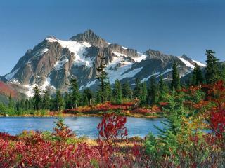 обои Красочное подножие каменной горы фото