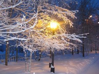 обои Фонарь и снег фото
