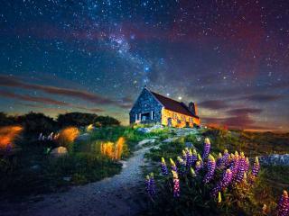 обои Звёздное летнее небо фото