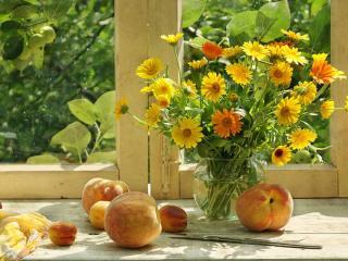 обои Персики и календула фото