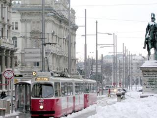 обои Зимний город фото