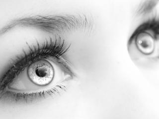 обои Черно-белое фото женских глаз фото