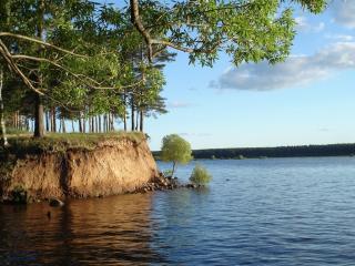 обои Обрыв берега у речки фото