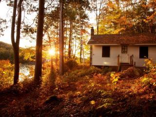 обои Домик засыпанный листьями фото