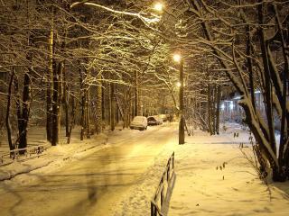 обои Зимняя улица вечером фото