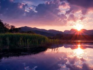 обои Солнце над горой и река с камышами фото