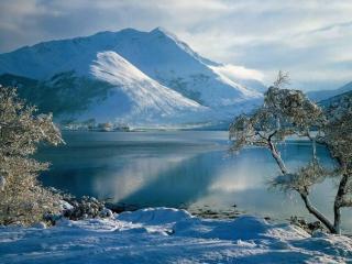 обои Голубой свет Зимы фото