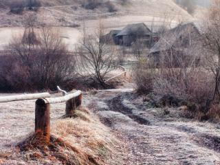 обои Деревенские заморозки фото