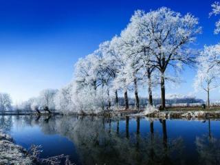 обои Зима хрустальная фото