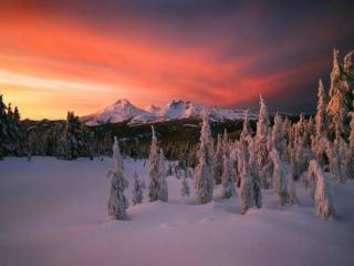 обои Снег,   горы и закат фото