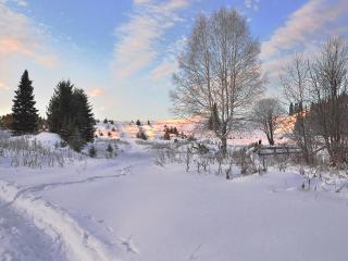 обои Уральская зима фото