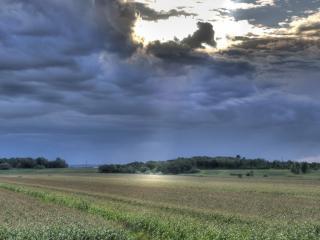 обои Надвигающиеся серые облака над полем фото