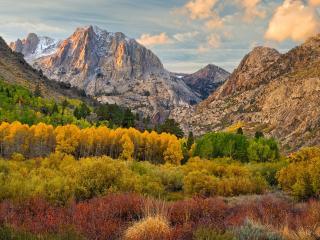 обои для рабочего стола: Желтеющие деревья в долине гор