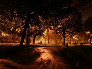 обои Дорожка вечернeго сквера фото