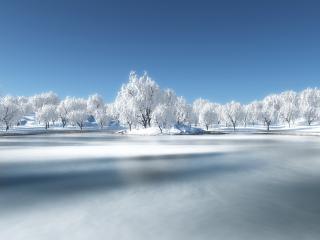обои Замерзшее озеро и деревья в инее фото