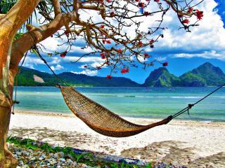 обои На берегу гамак, натянутый между деревьями фото