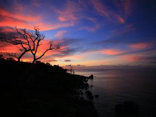 обои Вечернee небо цветное фото