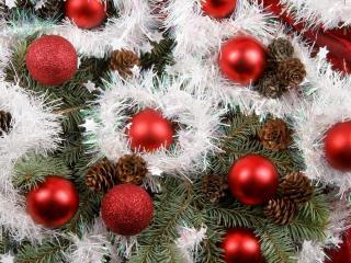 обои Красные шары и шишки на хвойной ветке фото