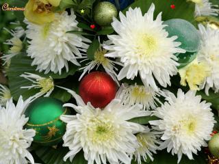 обои Белые хризантемы и новогодние игрушки фото