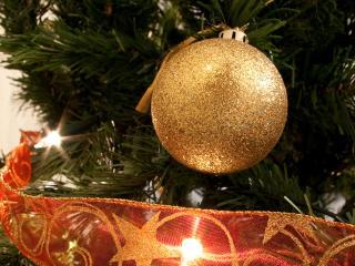 обои Шар желтый на елке фото