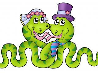 обои Рисунок змеиной свадьбы фото