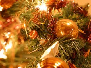 обои На новогодней елке фото