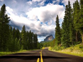 обои Дорога с желтой разметкой фото