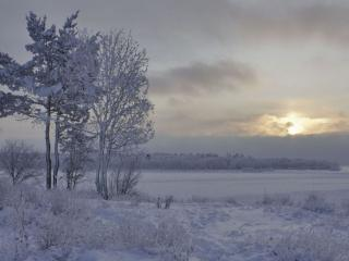 обои Зимний, заоблачный вечер фото